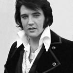 Elvis (Quelle: pixabay, CCL)