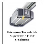 torantriebe_tor7